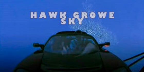 Hawk Sky Growe