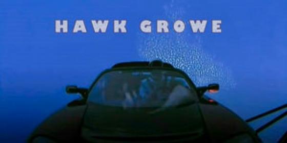 HAWK GROWE